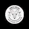 Aries Media